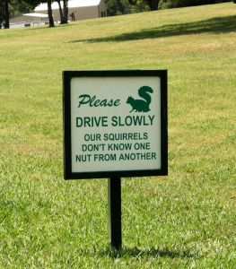 Please Drive Slowly